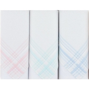 Box of 3 White Ladies Handkerchiefs With Pastel Coloured Striped Borders