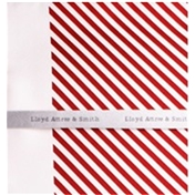 Silk Pocket Handkerchief -  Red and White Diagonal Stripes