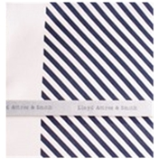 Silk Pocket Handkerchief -  Navy and White Diagonal Stripes