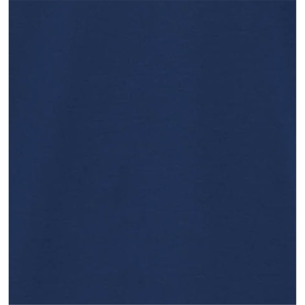 Spring 2019 Fynch Hatton Cotton Polo Shirt - Midnight Blue