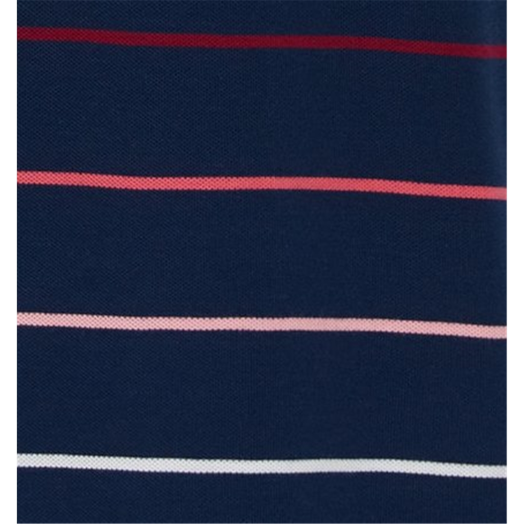 Spring 2019 Fynch Hatton Striped Polo Shirt - Blue
