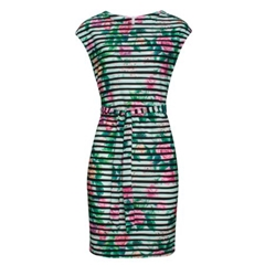 Smashed Lemon Stripe Roses Dress - Multi