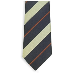 Royal Gloucestershire Hussars Regimental Tie