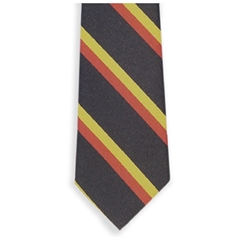 Royal Norfolk Regimental Tie